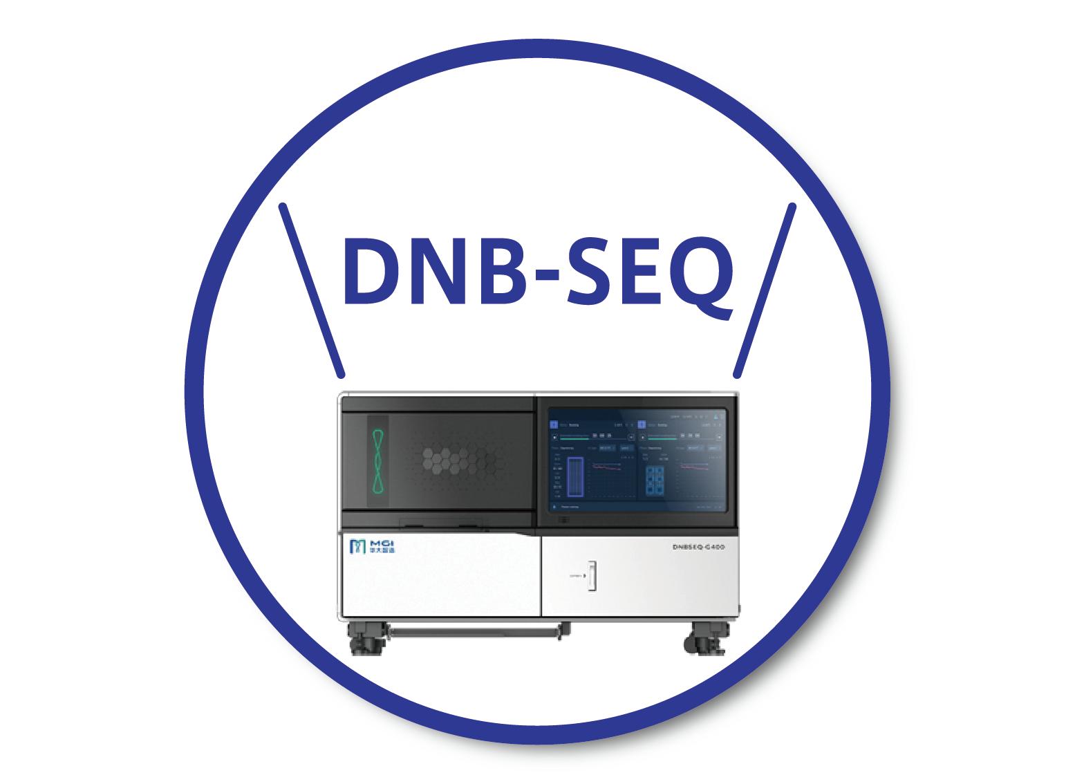 DNB-SEQ